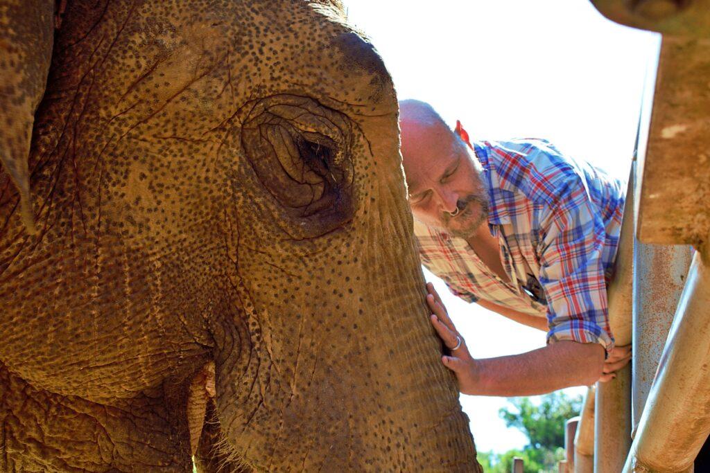 slonica lanka - damir urban