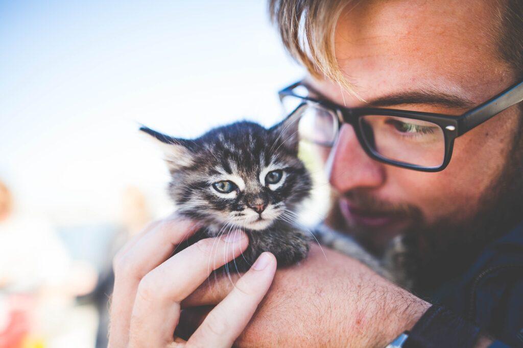 mačka muškarac